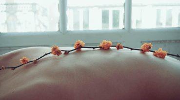 Zweig auf Rücken