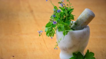 Pflanzen in Mörser